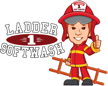 Ladder-1-Soft-Wash-Logo-3